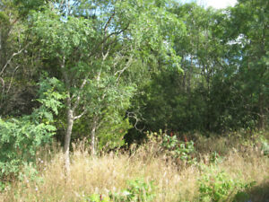 Lot for Sale Concession 4 Country Road 2