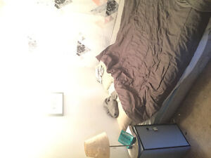 1 bedroom in a two basement for rent in Banff