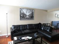 Clean and Updated Mohawk Student Rental