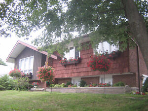 Port Elgin (Cottage Country) custom made Home