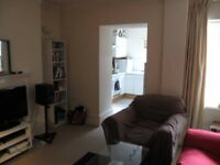Double Room available in a 2-bed flat in Bloomsbury - rare find!
