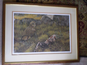 "Robert Bateman Signed Limited Edition Print - ""Short Eared Owl"" Kitchener / Waterloo Kitchener Area image 2"