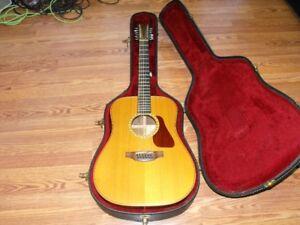 Vintage 12 string
