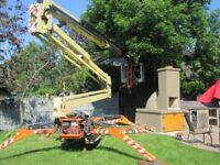 Tracked Tree Removal by MASTER TREE CARE. 5 Star Rated On Google