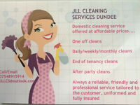 Domestic cleaner ***special offer***