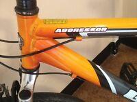 Gt aggressor retro mountain bike