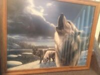 wolf picture $50.00