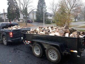 Union Tree Rem. @ Firewood !!!!!!!!!!!!!!!!!