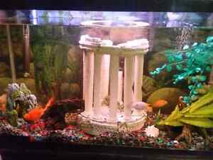 33 gallon tank with stand