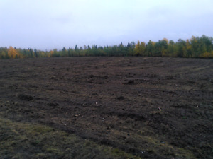 Land Clearing and Mulching