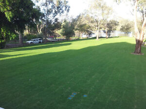 High Quality Turf Morley Bayswater Area Preview
