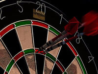 DARTS ANYONE???