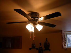 42 inch ceiling fan/light