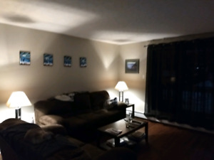 Looking for roommate for February