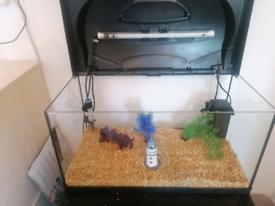 Fish tank full set up 60ltr