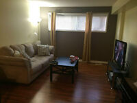 2 bedroom basement suite close to University and Whyte Ave