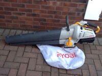 Ryobi petrol leaf blower
