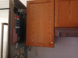 """18"""" wall cabinet"""