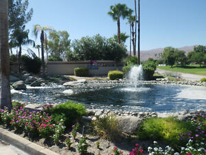 Palm Springs Condo for Rent