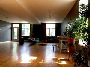 Sunny open-style loft, 1200pc, plateau mt-royal
