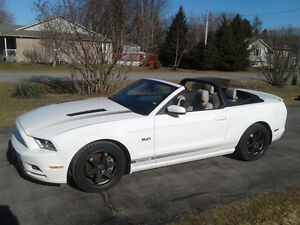 2013 Ford Mustang GT Convertible ***SPRING IS HERE***