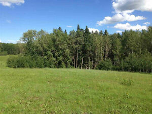 Land for Sale - Beautiful Lot