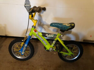 Little Bike for the New Rider in your Family