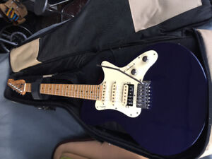 Godin electric guitar and accessories