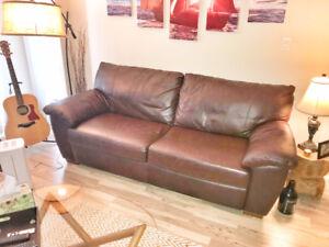Cozy Leather Sofa - Love Seat - $400