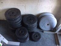Pro power vinyl weights (100 kgs)