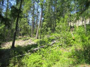 land for sale Prince George British Columbia image 4