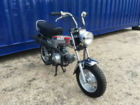 Honda ST50 DAX 1990 SHOW CONDITION, ONLY 737 MILES MUST BE SEEN.