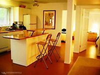 SYLVAN LAKE FULLY FURNISHED WALKOUT SUITE - 20 min's to Red Deer