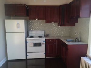 1 Bedroom Apartment For Rent $1100