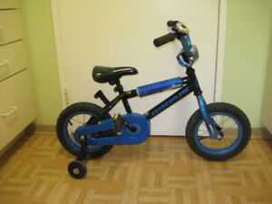 12'' bike STINGER  RADIUS in great condition clean tuned up