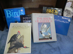 Bird watching collection of books, from guides to art.
