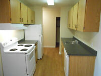2 Bedroom - Parkwood Condo  Available Now!
