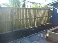 Looking for some privacy in your yard? Need a fence?