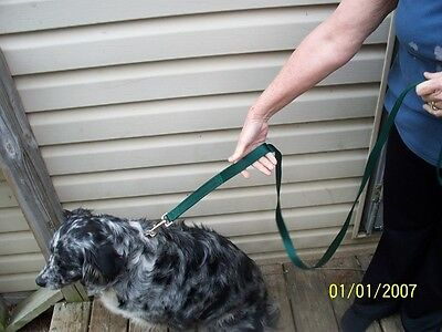 6 Ft Leash 2 Handle Training Lead With Matching Collar USA MADE