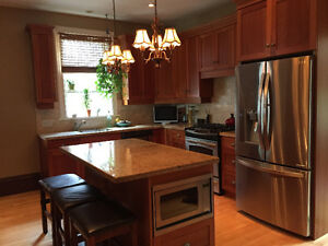 Natural Cherry Shaker Kitchen Cabinets and Granite Countertops