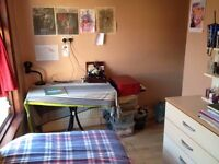 Single room in a friendly home to share in Turnpike lane