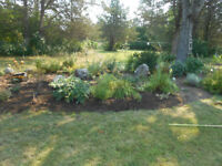 Grass cutting Flower bed maintenance