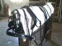 HORSE/ Lt DRAFT BIO HARNESS