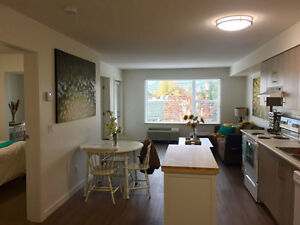 Centrally located summer Condo available May15th-Sept1st