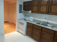 Huge renovated 1 Bed Room condo for sale at 541 Blackthorn ave