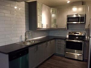 Modern Chic, Basement Suite, South Windermere Edmonton