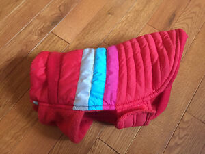 Dog Winter Jacket - xs (down) Edmonton Edmonton Area image 1