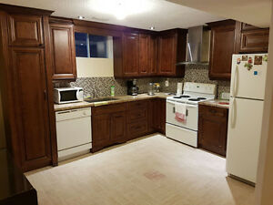 mississauga 1 bedroom basement apartment apartments
