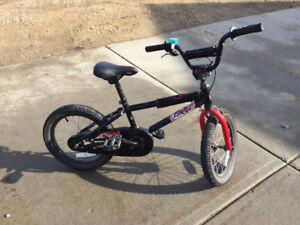 Boys bike with removable training wheels