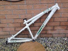 Gt tempest bike frame